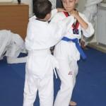 Martial-Arts-1-662x1024